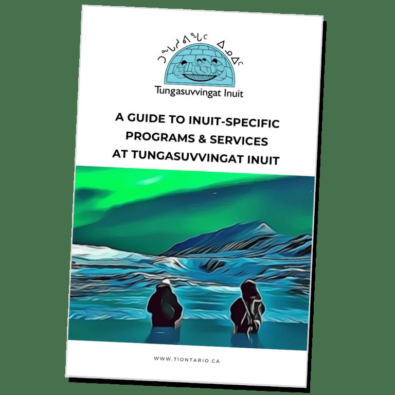 Illustration of TI program brochure